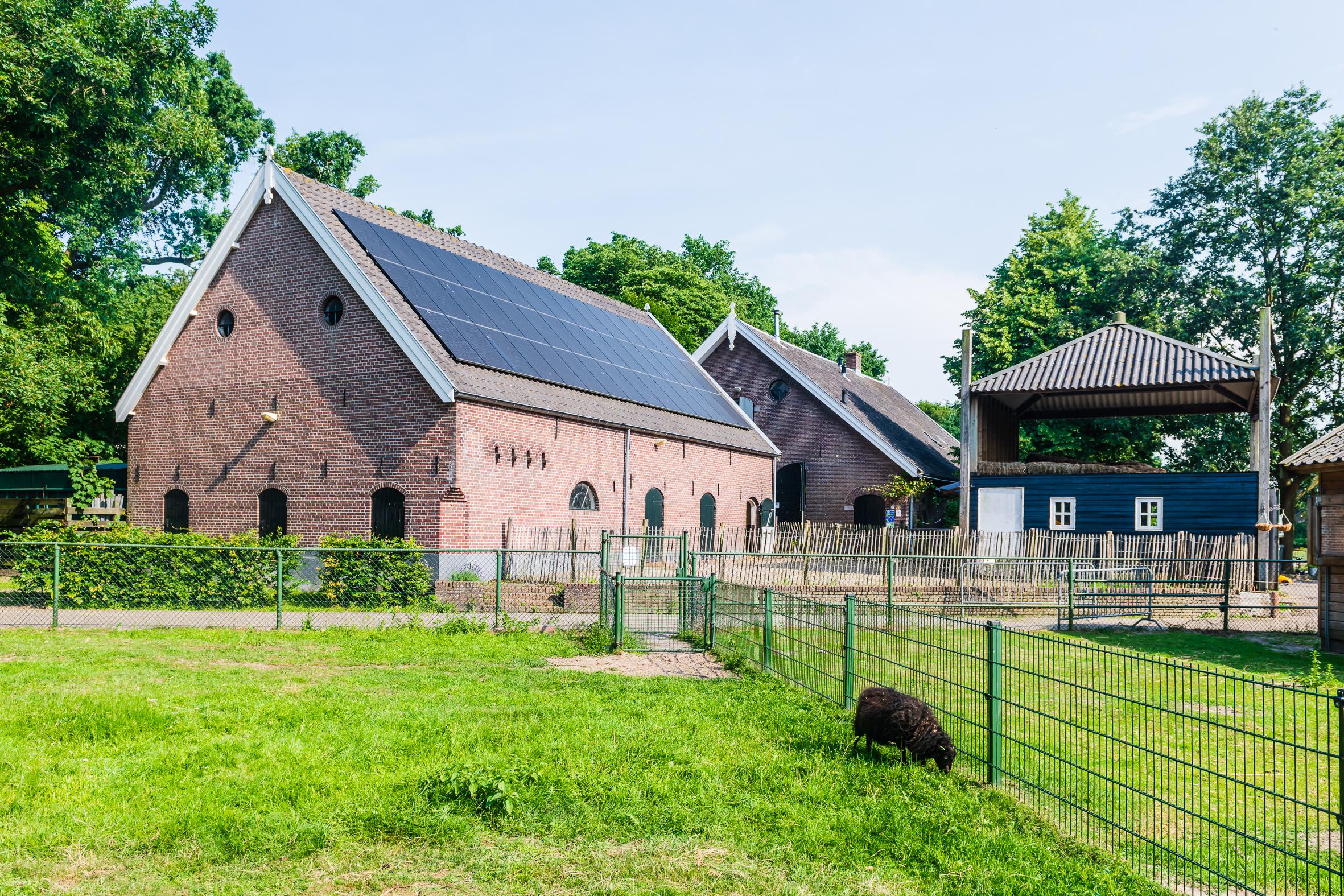 Kinderboerderij de Brink in Zeist voor activiteiten met kinderen